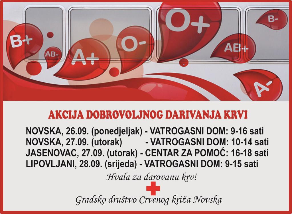 DDK111